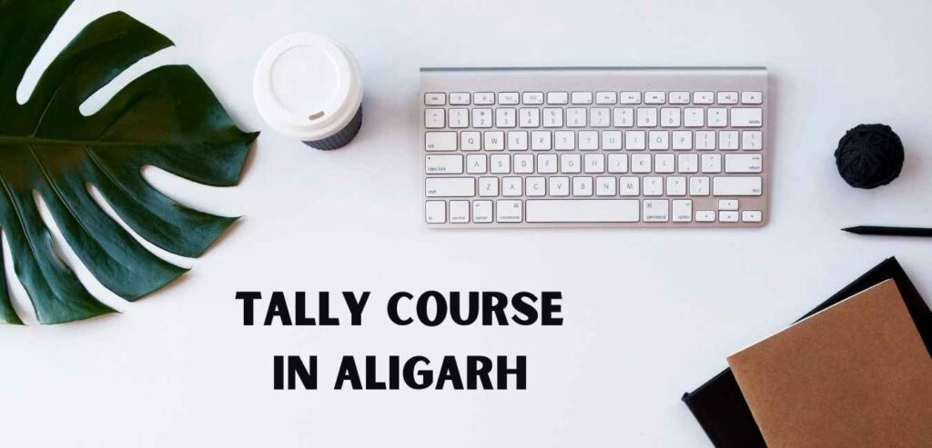 Tally Course in Aligarh
